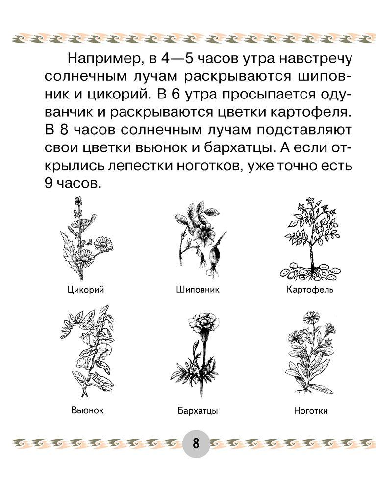 Magic box 2. Английский язык. Учебное пособие для 2 класса т.