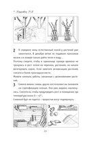 Календарь садовода и цветовода в иллюстрациях. Что, когда и как делать в саду — фото, картинка — 10