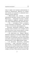 Ледяной бронежилет — фото, картинка — 10