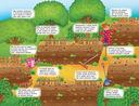 Панорамка-игра. Овощи и фрукты — фото, картинка — 1