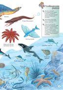 Водные животные — фото, картинка — 5