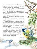 Барсучья кладовая — фото, картинка — 3