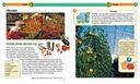 Современная детская энциклопедия — фото, картинка — 2