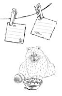 Зендудл-мотиватор. Сам себе Золотая Рыбка! Творческий блокнот, исполняющий желания — фото, картинка — 8
