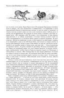 Арабские сказки. Книга тысячи и одной ночи. Полное иллюстрированное издание (в двух томах) — фото, картинка — 14