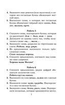 Контрольные и проверочные работы по русскому языку. 1-4 классы — фото, картинка — 7