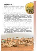 Пустыни — фото, картинка — 3