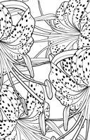 Зачарованный сад. Мини-раскраска-антистресс для творчества и вдохновения — фото, картинка — 3