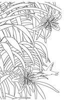 Зачарованный сад. Мини-раскраска-антистресс для творчества и вдохновения — фото, картинка — 5