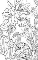 Зачарованный сад. Мини-раскраска-антистресс для творчества и вдохновения — фото, картинка — 6