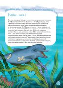 Я дельфин — фото, картинка — 7