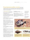 Рыба и морепродукты. Большая кулинарная книга — фото, картинка — 4