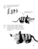Пластилиновый зоопарк. Как слепить любую зверюшку за 15 минут — фото, картинка — 5