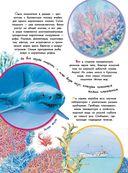 Кто под водой дышит? — фото, картинка — 2