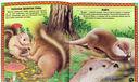 Большие и маленькие. Интересные факты о животных — фото, картинка — 1