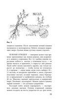 Виноград. Практические советы по выращиванию — фото, картинка — 11