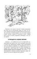 Виноград. Практические советы по выращиванию — фото, картинка — 7