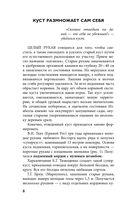 Виноград. Практические советы по выращиванию — фото, картинка — 8