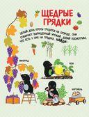 Овощи, фрукты, ягоды. Что где растет? — фото, картинка — 4