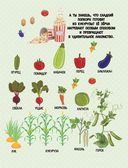 Овощи, фрукты, ягоды. Что где растет? — фото, картинка — 5