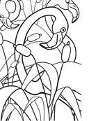 Дикие животные. Раскраска-антистресс для творчества и вдохновения — фото, картинка — 11
