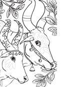 Дикие животные. Раскраска-антистресс для творчества и вдохновения — фото, картинка — 7
