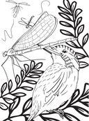 Дикие животные. Раскраска-антистресс для творчества и вдохновения — фото, картинка — 9
