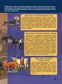 Большая энциклопедия юного техника — фото, картинка — 7