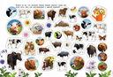 Домашние животные. Альбом наклеек — фото, картинка — 1