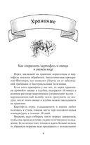 Бабушкины маринады, соленья, закуски — фото, картинка — 9