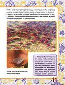 Подводный мир — фото, картинка — 11