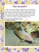 Подводный мир — фото, картинка — 12