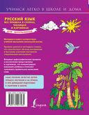 Русский язык. Все правила в схемах, таблицах и картинках — фото, картинка — 14