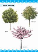 Цветы. Деревья — фото, картинка — 3