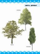 Цветы. Деревья — фото, картинка — 4