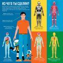 Профессор Астрокот и его путешествие по телу человека — фото, картинка — 5