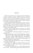 Оляна. Игры с артефактами — фото, картинка — 5