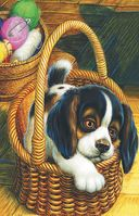 Как поссорились кошка с собакой — фото, картинка — 2