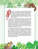 Природа России. Узнаем, играем (+ многоразовые наклейки) — фото, картинка — 1
