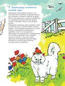 301 история о ловких котах — фото, картинка — 11