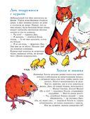 301 история о ловких котах — фото, картинка — 10