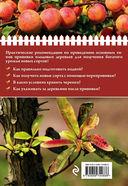 Урожайная прививка для вашего сада — фото, картинка — 4
