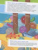 Почему звёзды живут на дне морском? Интересные факты о морских обитателях — фото, картинка — 2