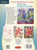 Цветы и растения — фото, картинка — 1
