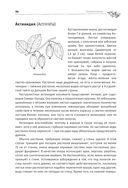 Большая энциклопедия садовода-огородника от А до Я — фото, картинка — 12