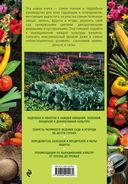 Большая энциклопедия садовода-огородника от А до Я — фото, картинка — 16