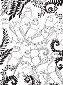 Райские птицы. Раскраска-антистресс для творчества и вдохновения — фото, картинка — 10