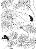 Райские птицы. Раскраска-антистресс для творчества и вдохновения — фото, картинка — 5