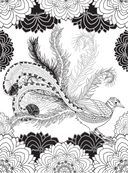 Райские птицы. Раскраска-антистресс для творчества и вдохновения — фото, картинка — 8