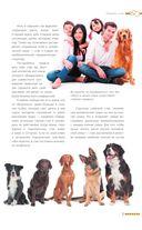 Дрессировка и воспитание собаки — фото, картинка — 11